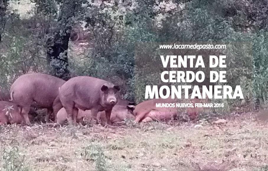 montanera_campa_feb_mar_2016