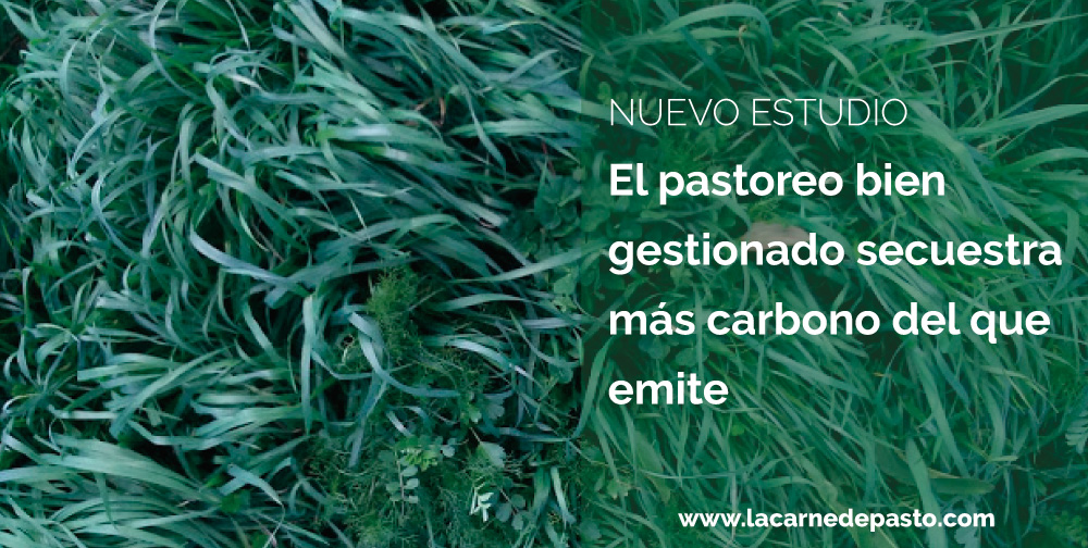 pastoreo