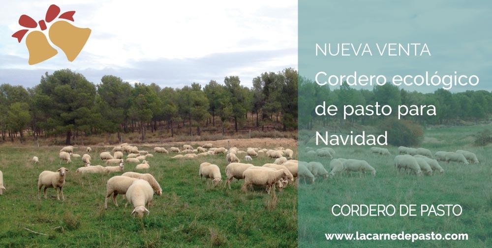 corderodepasto_plantilla_venta_rectangular-navidad-2020